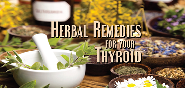 Herbal Remedies Thyroid Nation