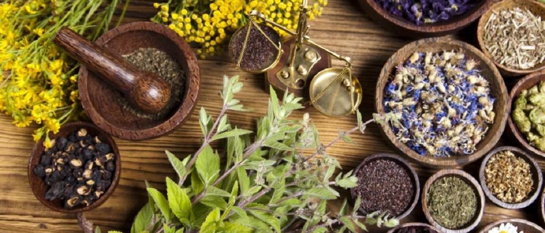 Welcome to Healer Omar Botha's Supplements