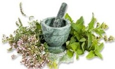 Herbs From Around the Web